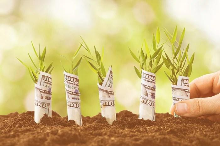 startup marketing strategies