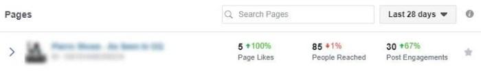 Business page Facebook social media audit