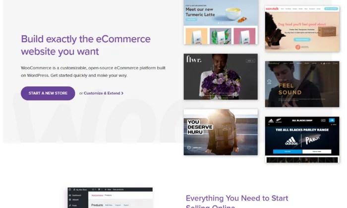 WooCommerce splash page for Best Ecommerce Platforms
