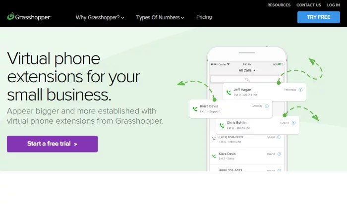 Grasshopper extensions splash page for VoIP Phone Services