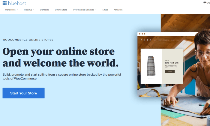 Bluehost main page for Best Ecommerce Website Builders