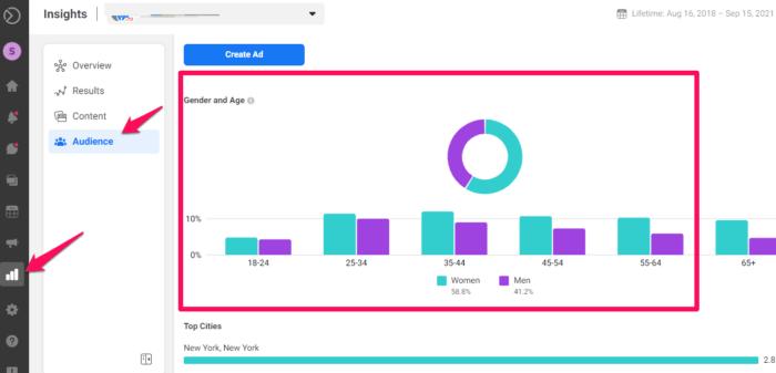 social media audit facebook insights audiences