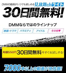 VOD、DMM見放題chライト