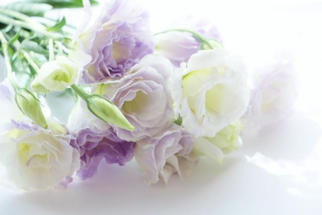 お彼岸にお供え花を贈る時のお届け日とギフト選びのマナーと相場