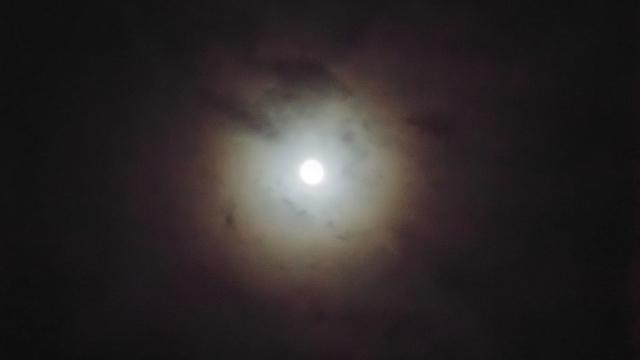朧月や朧月夜とはどんな意味?いつどの季節に使うのが正しいの?