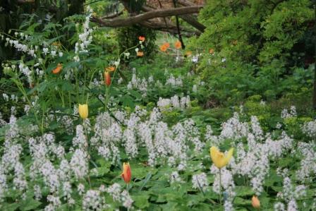 Tijd Voor Tuin : Villa augustus reis terug in de tijd naar villa plinius