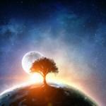 「聖なる泉と宇宙の樹」アートの感想をいただきました♪