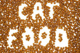 猫が食べると危険な食べ物から考えるフード選びのコツまとめ