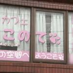 墨田区の猫カフェ「ねこのて」の経営者と猫の状態ってどうなの?