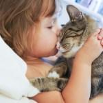 [保存版]猫カフェでモテモテになるための5つのコツ