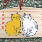 猫のことを祈願できる神社3選!パワースポットまとめ