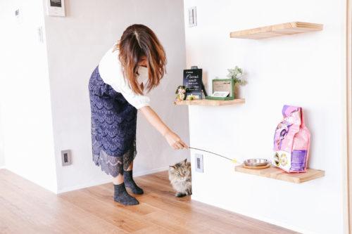 [猫まっしぐら]ねこじゃらしを手作りして遊ぶ遊び方と注意点
