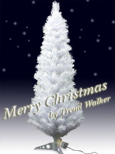 d965aa76ae3d4975403bca238d7a3b9a - クリスマスツリーにおける、猫対策ソリューション