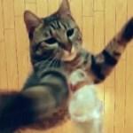 華麗すぎる196cmの垂直跳び(動画)