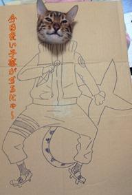 2da422780a thumb4 - 「段ボール×猫=コスプレ」の破壊力の強さが異常