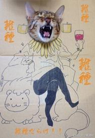 829b1dacea thumb5 - 「段ボール×猫=コスプレ」の破壊力の強さが異常