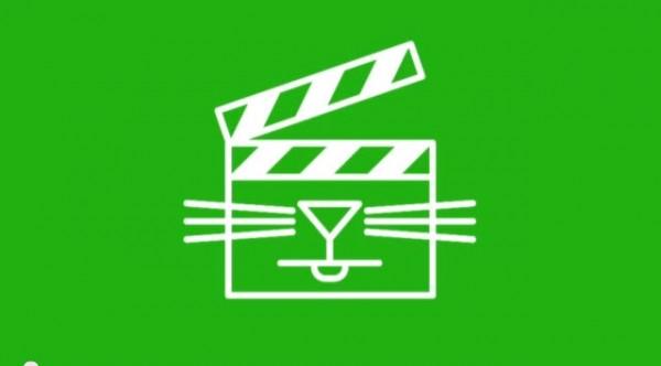 2013 04 09 0 28 16 600x332 - 今年も来たぞぉぉぉ「インターネット猫動画フェス 2013」