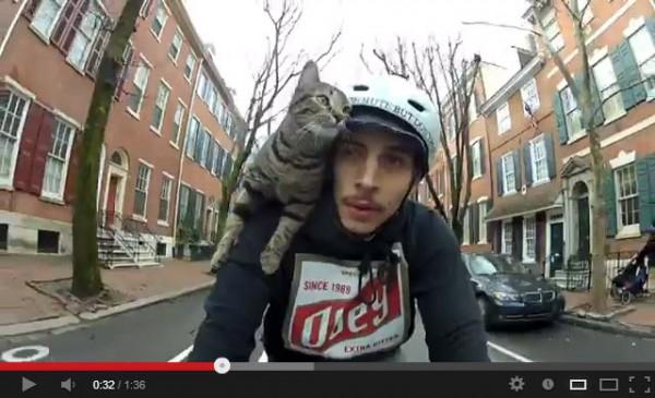 130523ridbikecat 600x365 - さっそうと風を切る、自転車乗りの猫(動画)