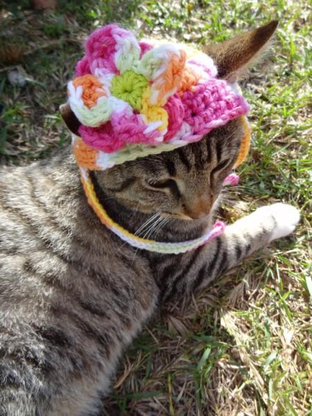 130608cathat03 450x600 - 結構かわいい、毛糸の猫用帽子