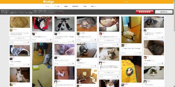 130611catgo 600x297 - 猫の写真で繋がるキャットソーシャル、「キャットゴー」