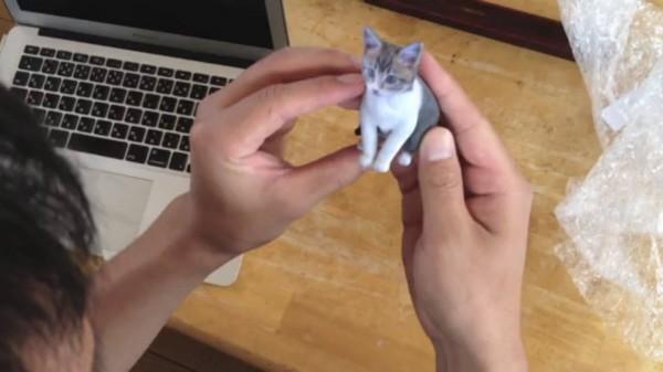 130706petfigcat 600x337 - 3Dプリンタで猫フィギュアを作ってくれるサービス「Petfig」