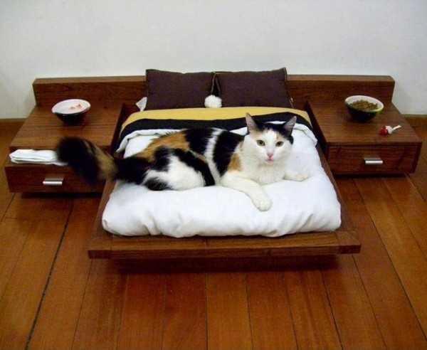 130901catbed01 - 寝室に置いても、インテリアになるモダンな猫ベッド