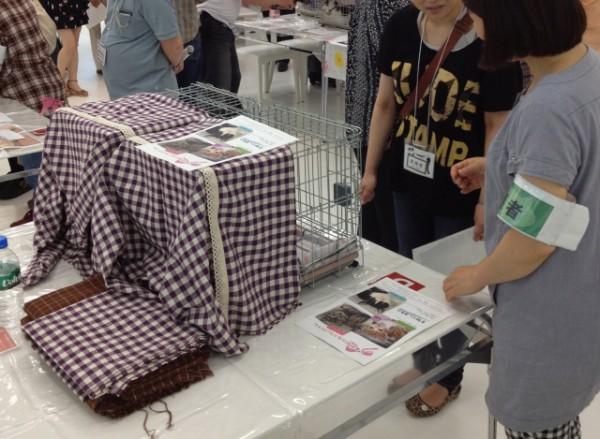 130922cat02 600x439 - 神戸猫ネット主催の「猫の里親譲渡会」、9月29日にフェリシモ本社で開催