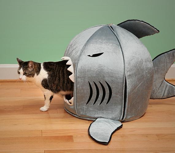 131004cathouse - ガオー、食べちゃうぞー的な猫ハウス