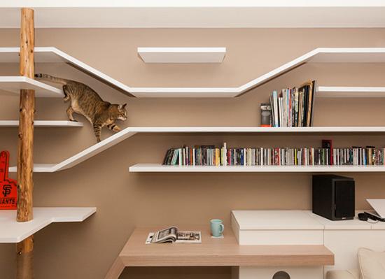 131012cathaouse01 - キャットタワーと本棚との華麗なる融合