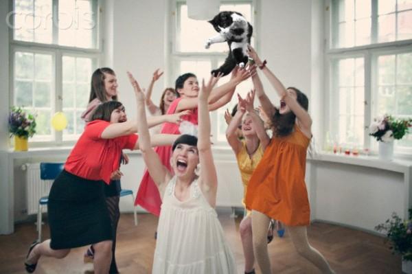 131026catthrow03 600x399 - 「ブーケの代わりに、花嫁が猫を投げる」というニッチすぎるコラ画像が集まるブログ