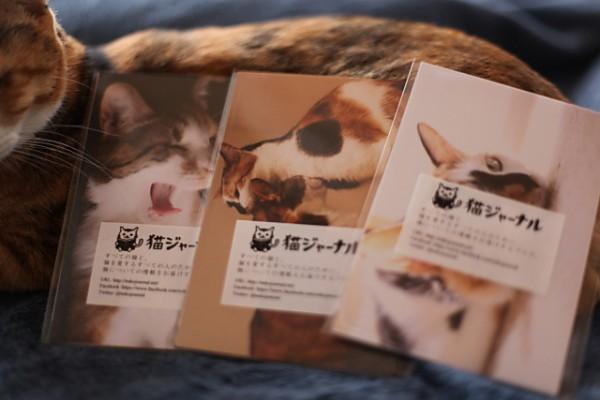 131103catpostcard02 600x400 - 猫ジャーナル謹製のポストカードセット、吉祥寺のギャラリー「イロ」にて配布中