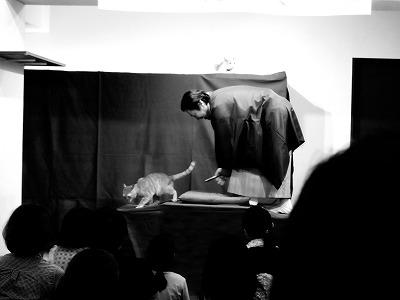 131117nekoraku01 - 猫カフェで開催する落語会「猫楽」