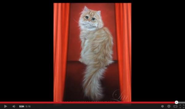131226catdrawing02 600x356 - なんだ、写真…じゃない…だと…。と思わされるリアルな手描き猫(動画)