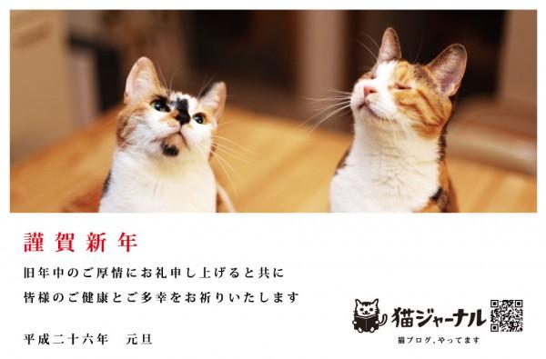 140109nengajyou 600x395 - 猫年賀状写真コンテスト2014、応募締切は1月14日まで