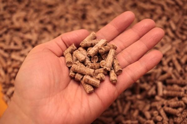 IMG 1223 600x399 - 岐阜の間伐材を有効活用した猫砂「いびペレ」