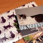 猫の名誉編集長「りく」、ノベルティとして活躍の幅を広げる