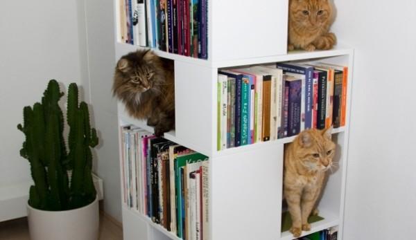 140326catbookshelf01 600x347 - キャットタワー機能付き本棚、本を取る手が猫に伸びそう