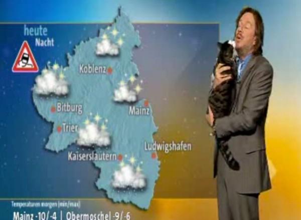 140513catnews 600x439 - 天気予報放送中に猫が乱入、視聴者の視線を釘付けにする