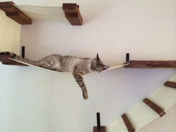 140630catmock 600x450 - 猫をダメにする「インディ・ジョーンズの吊り橋」が絶賛販売中