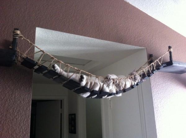 140630catmock03 600x447 - 猫をダメにする「インディ・ジョーンズの吊り橋」が絶賛販売中