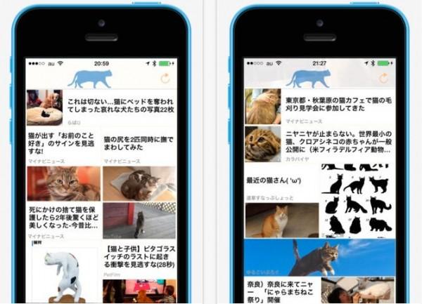 140709mottoneko 600x433 - 猫ニュースだけを閲覧できる眼福アプリが登場、ただしiOSのみ