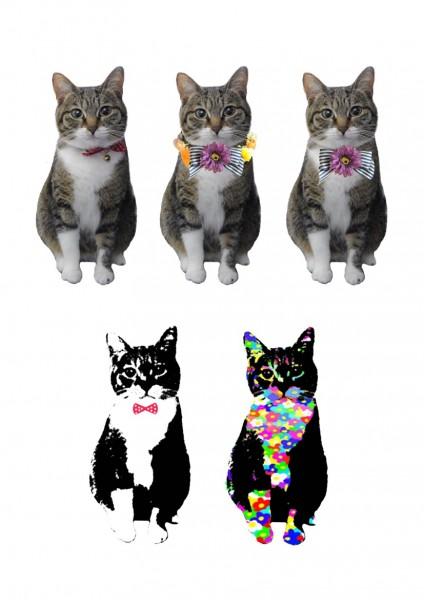 140724catearring03 424x600 - 猫写真から作るオーダーメイドピアス。おすまし顔がそのままアクセに