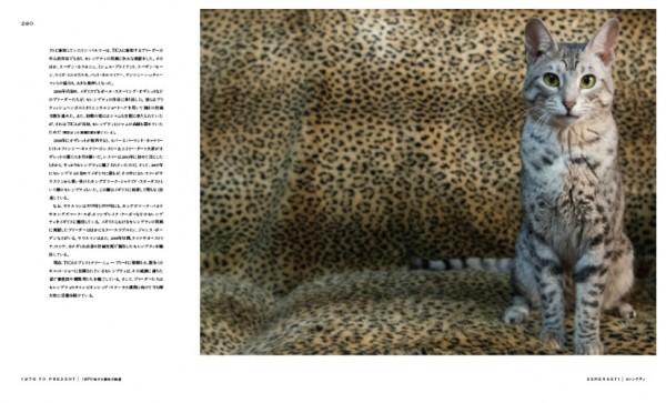 140803cat06 600x363 - 猫種の歴史を紐解く物語を綴る、『世界で一番美しい猫の図鑑』