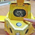 猫用潜水艦に潜む猫、涼しげな表情を浮かべる