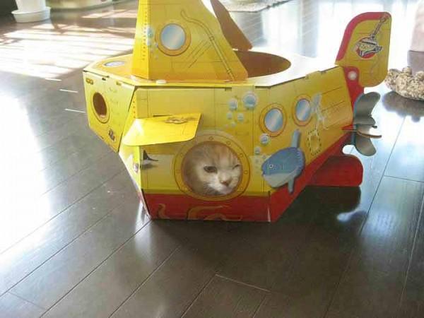140812catsubmarine02 600x450 - 猫用潜水艦に潜む猫、涼しげな表情を浮かべる