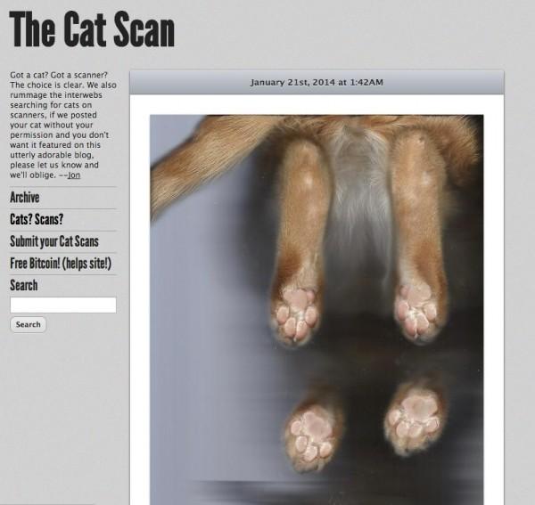 140813thecatscan 600x567 - ひたすらに猫のスキャン写真をアップするブログ