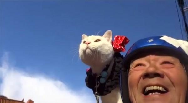 140820ryunosuke 600x331 - リトルカブ乗りの白猫、じいちゃんの肩で颯爽と風になる