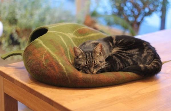 140923leafbed02 600x392 - ほのかに秋色な葉っぱ風ベッドに眠る猫、中でも上でも快適な寝顔