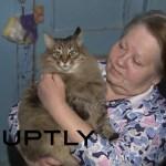 人の赤ん坊を凍死から救ったロシアの野良猫、その功により名前と住み処を与えられる