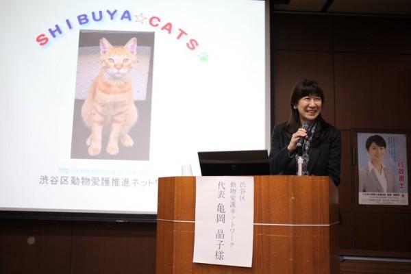 150301catsymposium005 600x400 - 行政書士ADRセンター東京主催の「地域猫シンポジウム2015」レポート